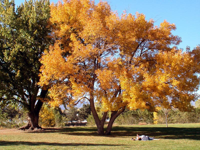 Monument Valley Park, Colorado Springs