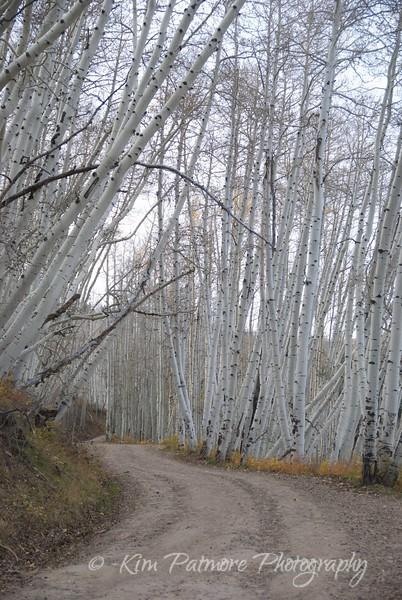 Last Dollar Road, near Telluride, Colorado