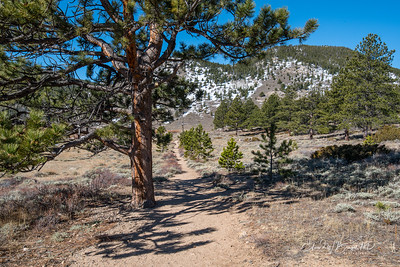 Colorado_015