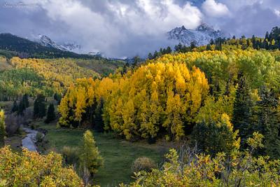 Rd. 7 Ridgway Colorado
