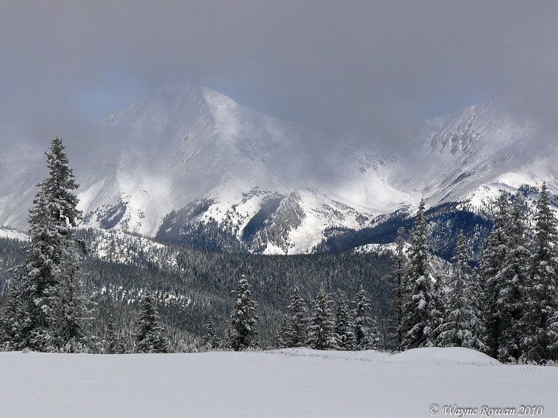Snowy Mountains from Monarch Pass