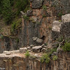 A rocky ledge in the Black Canyon of the Gunnison.