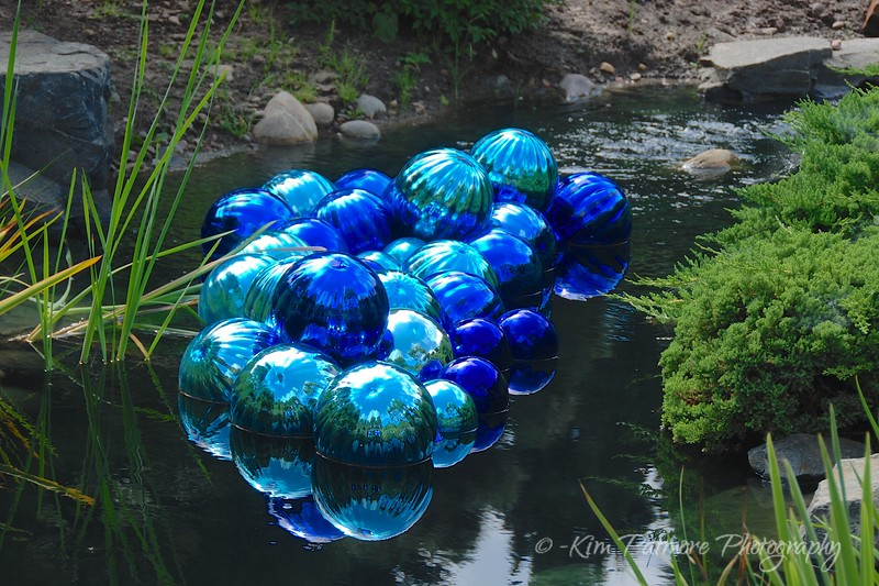 Denver Botanic Garden<br /> Chihuly