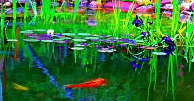 Sam's Pond