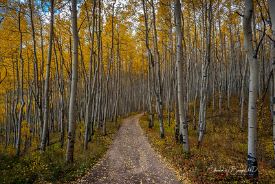 Colorado_003