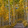 Colorado_001