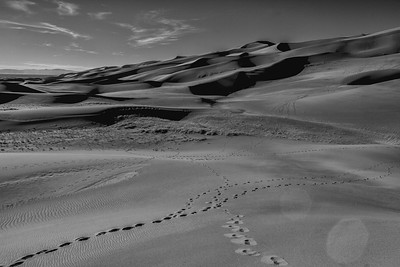Great Sand Dunes, Black and White