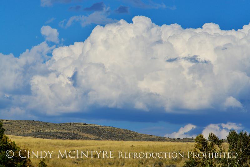 Cumulus clouds, Hayden, CO (2)