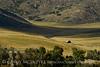 Pastoral view, Hayden, CO (3)