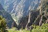 Black Canyon of Gunnison Tomichi Pt (6)