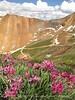 California Gulch Pass views (1)