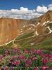 California Gulch Pass views (4)