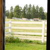 View out stall door