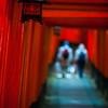The Walk Ways of Fushimi Inari