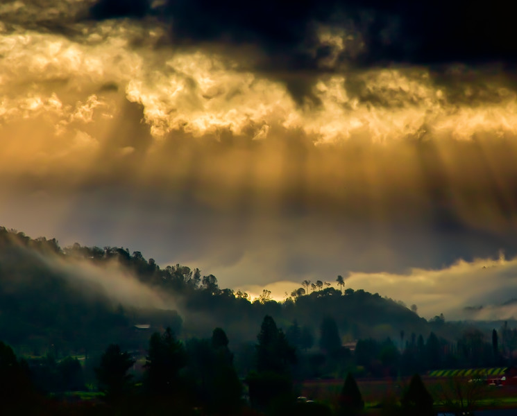 Napa Valley-1470-Edit-Edit