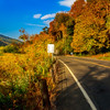 Fall On The Road