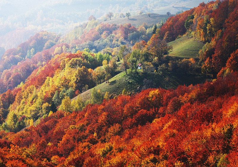 Come, let us live in an autumn!