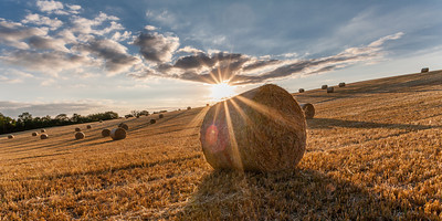 Rolling Bales