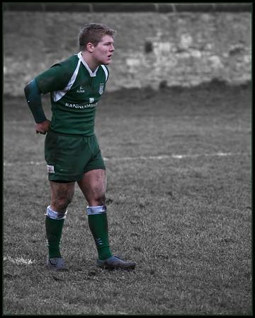 Hawick in Green