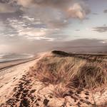 Karamea Dunes