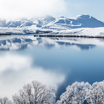 Winter at Lake Alexandrina