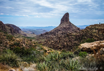A view of Weaver's Needle from Fremont Saddle in the Superstition Wilderness. The story goes the shadow of the needle will lead you to the Lost Dutchman's Gold Mine.