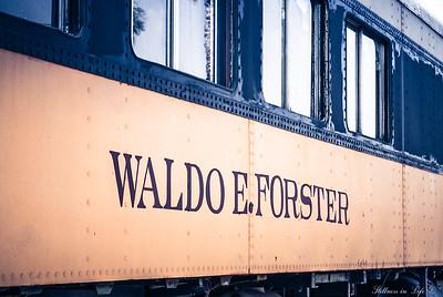 Waldo E Forster 2931
