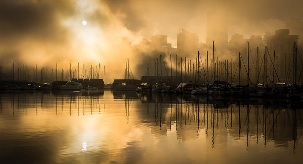 Coal Harbour Sunrise