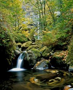MCord Creek and Elowah Falls