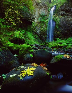 Moffett Creek Falls