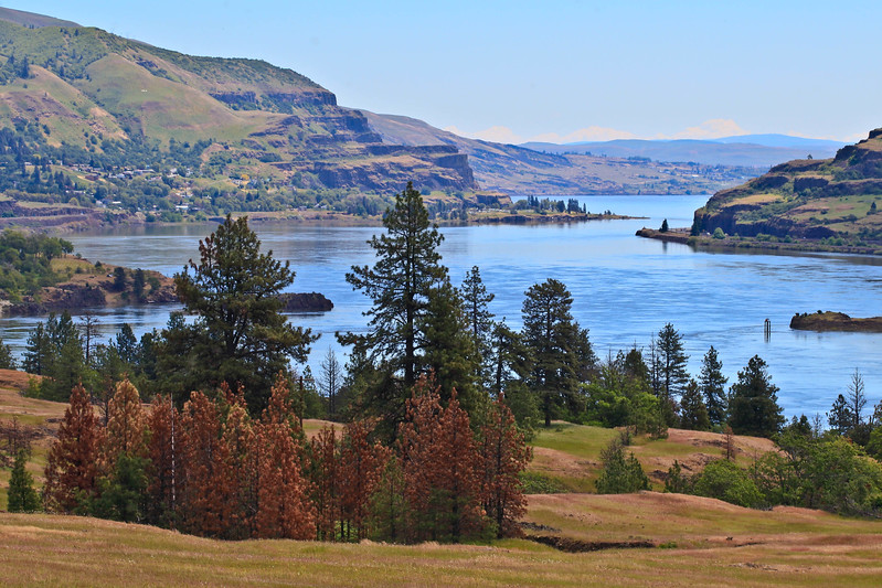 Columbia River at Stevenson, WA