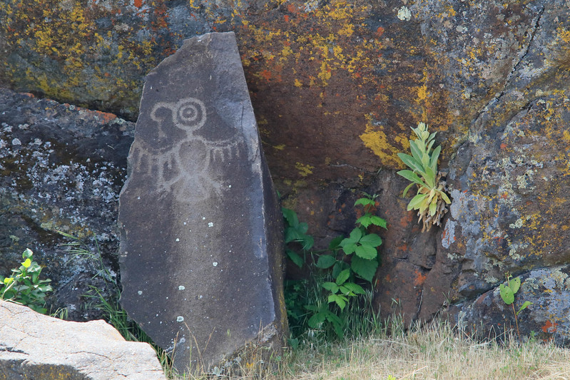 Petroglyph in Columbia River State Park
