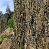 Columbia River basalt cliffs