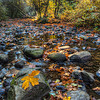 Oneonta Creek in Fall