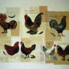 04 1999 Chickens
