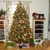 12/2002 Serik and Xmas tree