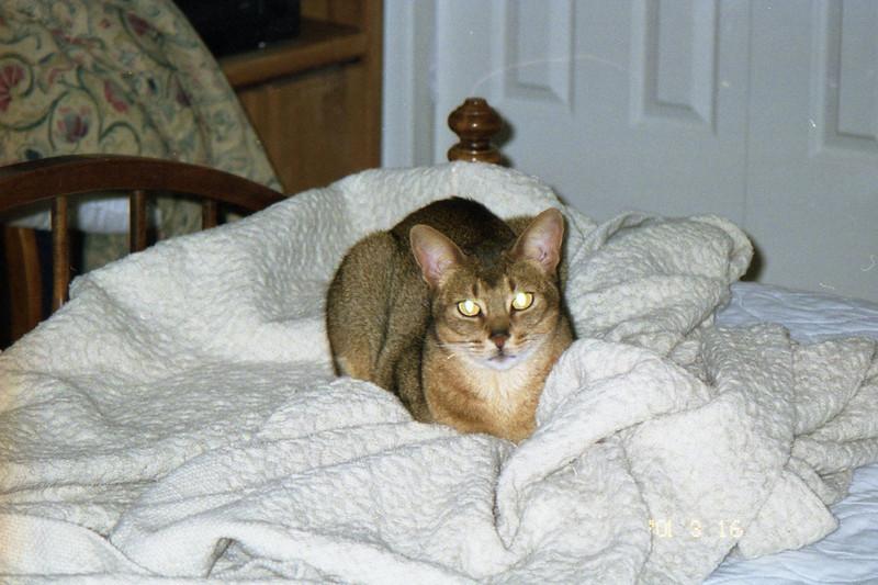 03 2001 Bielka