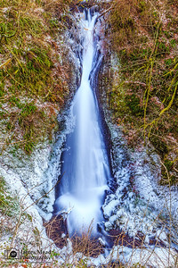 """Falling Through The Brush,"" Lower Shepperd's Dell Deep Freeze, Columbia River Gorge, Oregon"