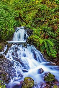 """""""Through the Forest,"""" Sheppard's Dell, Columbia River Gorge, Oregon"""