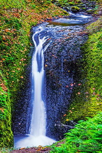 """Flow of Autumn,"" Middle Oneonta Falls in the Autumn, Columbia River Gorge, Oregon"