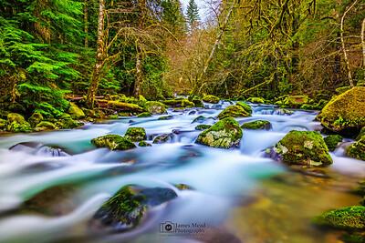 """Placid Waters,"" Rock Creek, Gifford Pinchot National Forest, Washington"