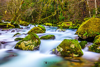 """Peaceful Movement,"" Rock Creek, Gifford Pinchot National Forest, Washington"