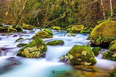 """Peaceful Movement,"" Rock Creek, Gifford Pinchot National Forest, Washington"
