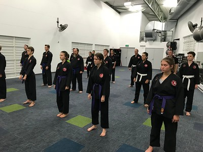 Combat Self Defence Grading March 2018