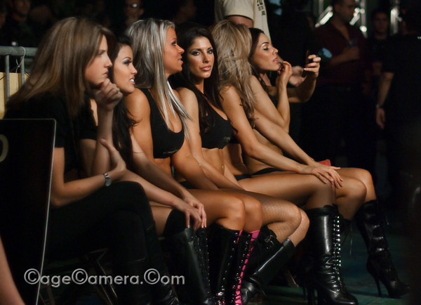 Ring girls, during a match.