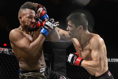 APFC 17 American Predator Fighting Championship 10.11.14