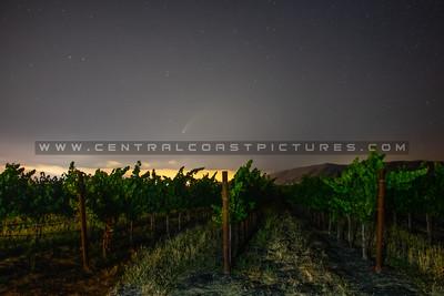 neowise comet vineyard 3527