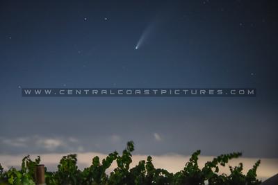 neowise comet vineyard 3501b