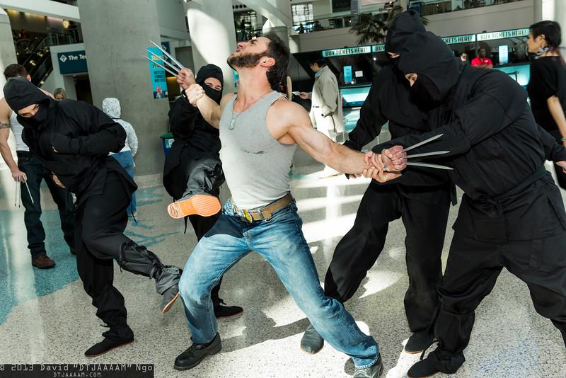 Ninjas and Wolverine