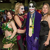 Poison Ivy, Harley Quinn, Joker, and Catwoman